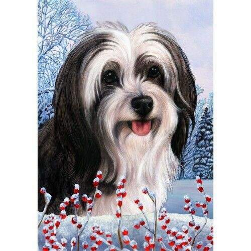 Winter House Flag - Black and White Tibetan Terrier 15478