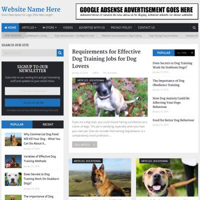 Dog Training Store Mobile Friendly Responsive Website Business For Sale Domain