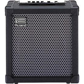 Roland cube 60 amp