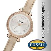 Fossil Rotgold