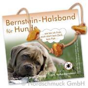 Bernstein Hundehalsband
