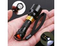 3W LED Waterproof Mini Torch Black/Gold