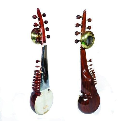 Professional Sarod with Tumba  Ali Akbar Khan Style Fiber Case Single Teka Wood