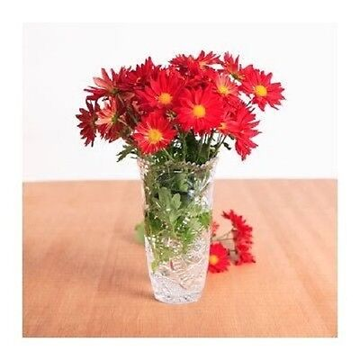 Clear Plastic Crystal Cut Edge Vase 8 Inch Decorative Home Decor Center Piece