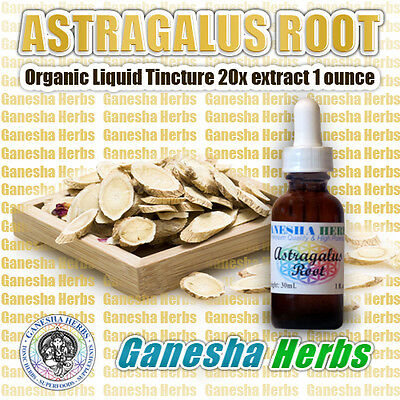 ORGANIC ASTRAGALUS ROOT EXTRACT LIQUID TINCTURE - ASTRAGALOSIDE - 1 ounce ()