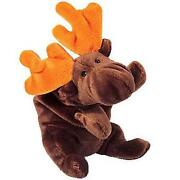Chocolate Moose Beanie Baby