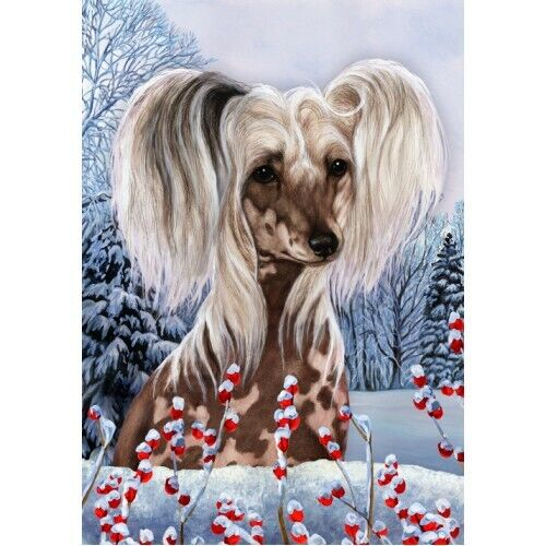 Winter House Flag - Chinese Crested 15069