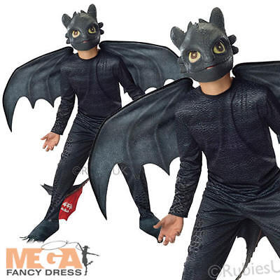 Toothless Night Fury Boys Fancy Dress Train Your Dragon 2 Kids Childrens - Dragon Costume Kids