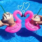 Flamingo Pool Floating Drink Holders
