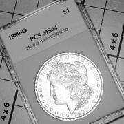 1880 O Morgan Dollar