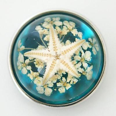 Fits Ginger Snap Ginger Snaps Sea Life Magnolia Vine Jewelry Button 18mm Charm