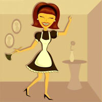 Excellent and Efficient House Cleaner Available