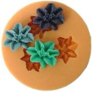 Silicone Cookie Mold