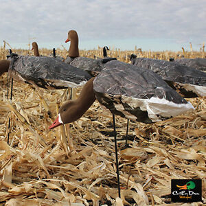 NEW WHITE ROCK DECOY COMPANY SPECKLEBELLY GOOSE WIND SOCK DECOYS FLOCKED HEADS