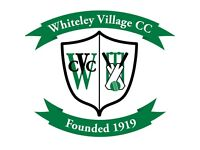 Cricket Players wanted: WICKET KEEPER/BATSMAN for 1st XI team in KT12