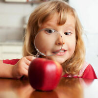 Early Childhood Educator Wanted - We are expanding! The Apple Tr