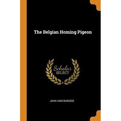 The Belgian Homing Pigeon - Paperback / softback NEW Burgess, John L 16/10/2018