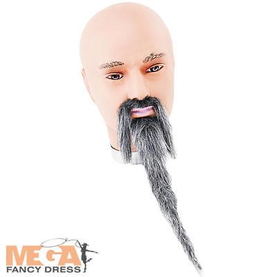 Grey Wizard Beard & Tash Fancy Dress Halloween Book Chinese Man Costume Access - Halloween Costumes W Beards