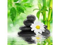 Deep tissue professional body massage