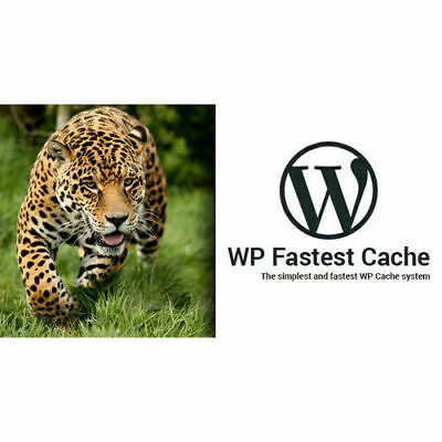 Wp Fastest Cache Wordpress Plugin Premium Lastest Version