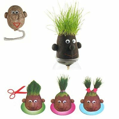 Grow Your Own Hairy Grass Head - Novelty Christmas Stocking Filler gift 37/0017