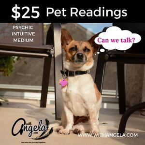 Companion Animals Reading with Angela