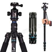 Monopod Head
