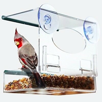 BEST BIRD FEEDER for BIRD LOVERS - Clear Window Bird Feeder with Removable