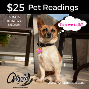 Pet Readings- with Angela- Psychic Intuitive Medium