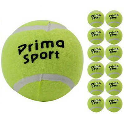 12 X TENNIS BALLS SPORT PLAY CRICKET DOG TOY BALL OUTDOOR FUN BEACH LEISURE NEW