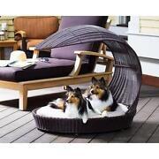 Dog Chaise
