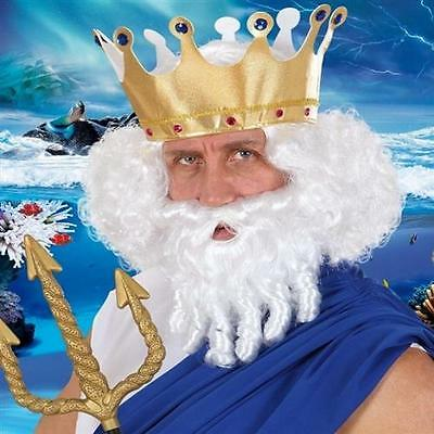 Neptun Perücke mit Bart Locken weiß  Herren Kostüm Poseidon Meressgott - Kostüm Locken Perücke