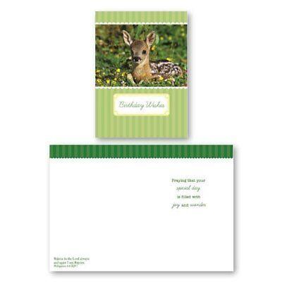 Assorted 12 Pack BOXED Animal BIRTHDAY CARDS Bulk For Kids WITH KJV SCRIPTURE...
