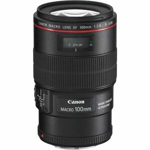 Top 5 Canon Close-up Lenses for Beginners