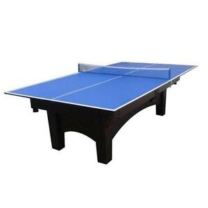Ping Pong Table Top