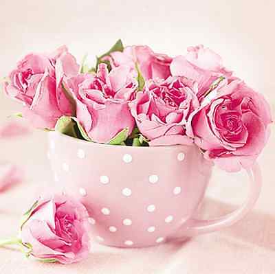 20 Paper Lunch Napkins ROSES IN A CUP - PARTY DECOUPAGE SERVIETTES TaT