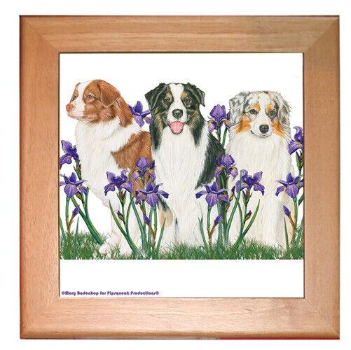 "Australian Shepherd Aussie Dog Kitchen Ceramic Trivet Framed in Pine 8"" x 8"""