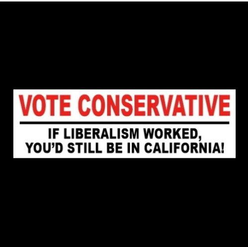 "Funny ""VOTE CONSERVATIVE"" Anti Joe Biden Liberal BUMPER STICKER gun rights decal"