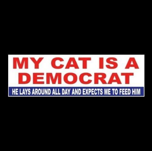 """Funny """"MY CAT IS A DEMOCRAT"""" Anti liberal welfare BUMPER STICKER decal Obama GOP"""