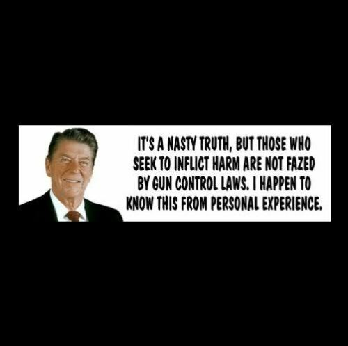 "Ronald Reagan ""NASTY TRUTH"" 2nd Amendment BUMPER STICKER gun rights decal NRA"