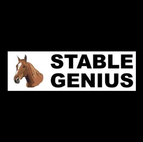 "Funny ""STABLE GENIUS"" window decal BUMPER STICKER horse, Arabian, Morgan Quarter"