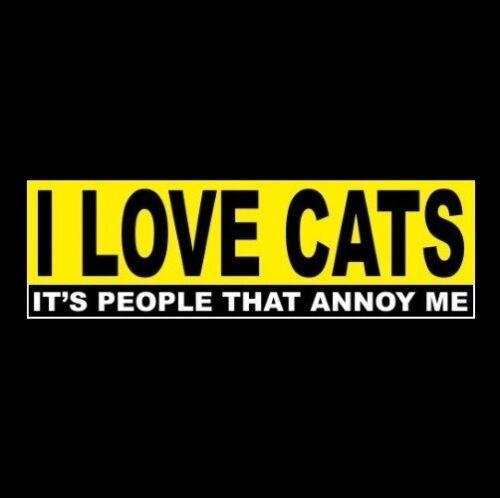 "Funny ""I LOVE CATS - IT"