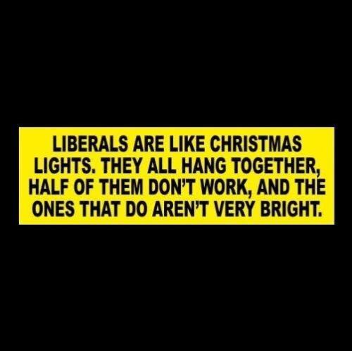 "Funny ""LIBERALS ARE LIKE CHRISTMAS LIGHTS"" Anti Hillary, Obama BUMPER STICKER"