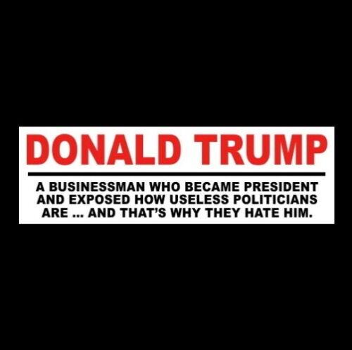 """DONALD TRUMP VERSUS USELESS POLITICIANS"" Pro Trump BUMPER STICKER maga 2020"