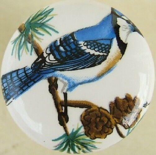 Cabinet Knobs Knob w/ Bluejay Bird #3