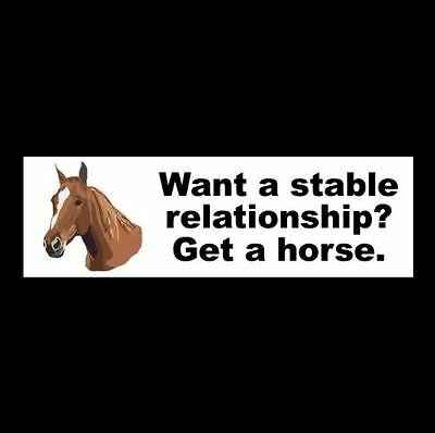 """Funny """"WANT A STABLE RELATIONSHIP? GET A HORSE."""" decal BUMPER STICKER, if, you"""