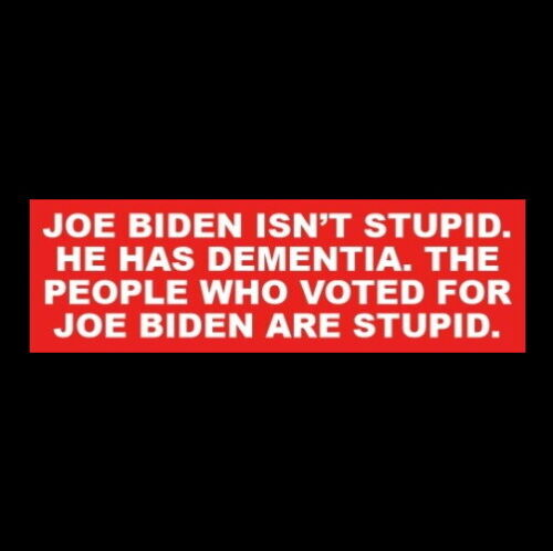 "Funny ""THE PEOPLE WHO VOTED FOR JOE BIDEN ARE STUPID"" Anti Liberal STICKER decal"