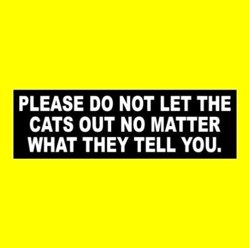 "Funny ""PLEASE DO NOT LET THE CATS OUT NO MATTER WHAT THEY TELL YOU"" sign STICKER"