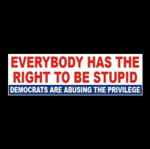 """Funny """"EVERYBODY (DEMOCRATS) HAS THE RIGHT TO BE STUPID"""" Anti Joe Biden STICKER"""