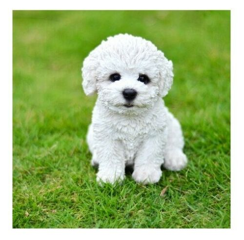 NEW Bichon Frise Puppy Statue Figurine - Life Like Statue Home / Garden Detailed